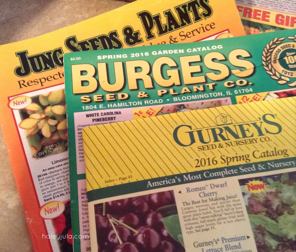 Spring is on its way! Some of my seed catalogs.  Some  . . . Yes I get more then this :)