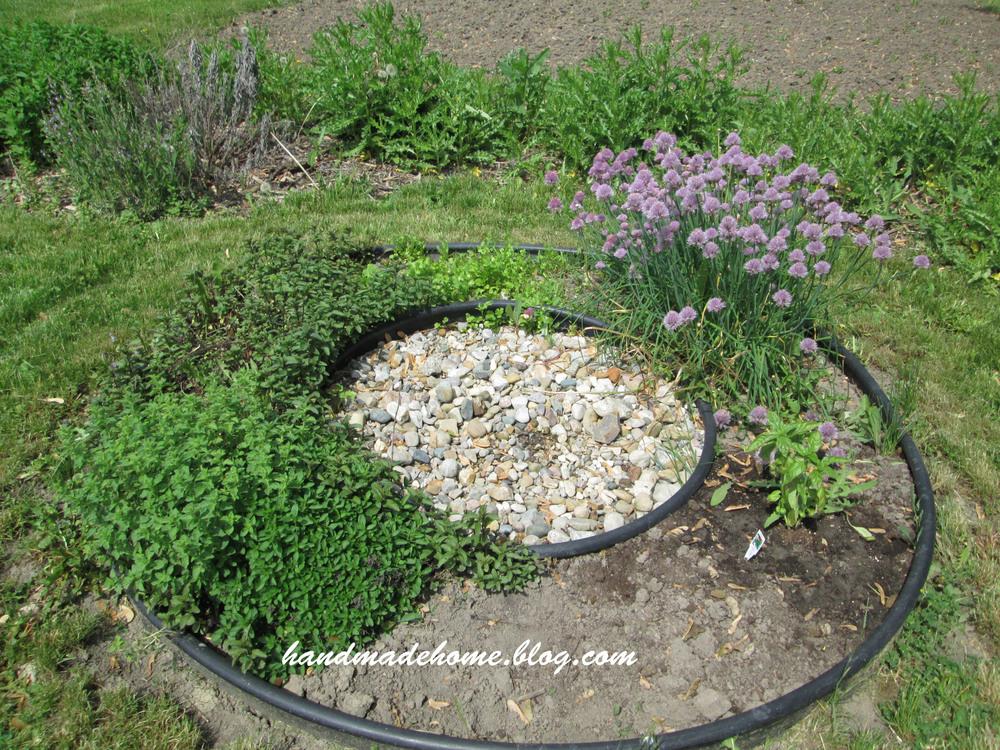 2014 My herb garden :)
