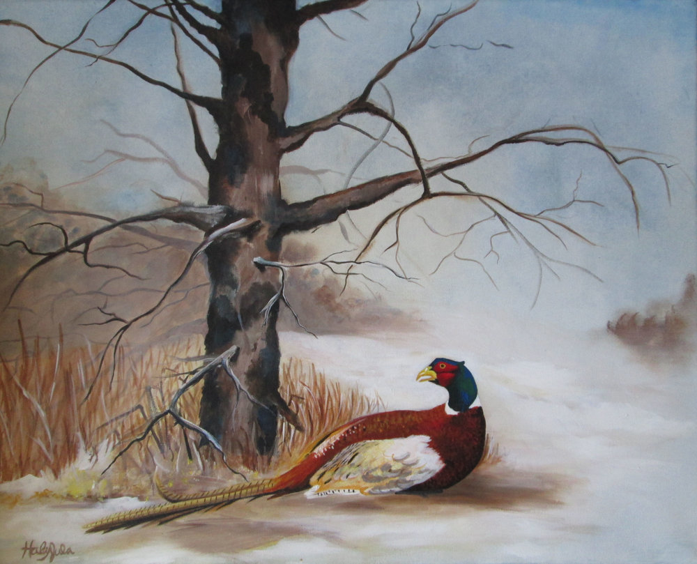 Winter Pheasant.jpg
