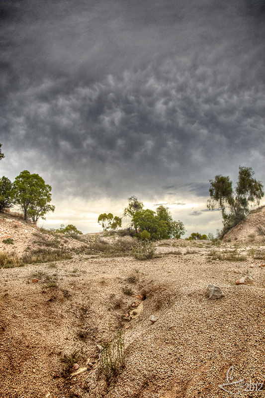 Texturata: Lightning Ridge, NSW.
