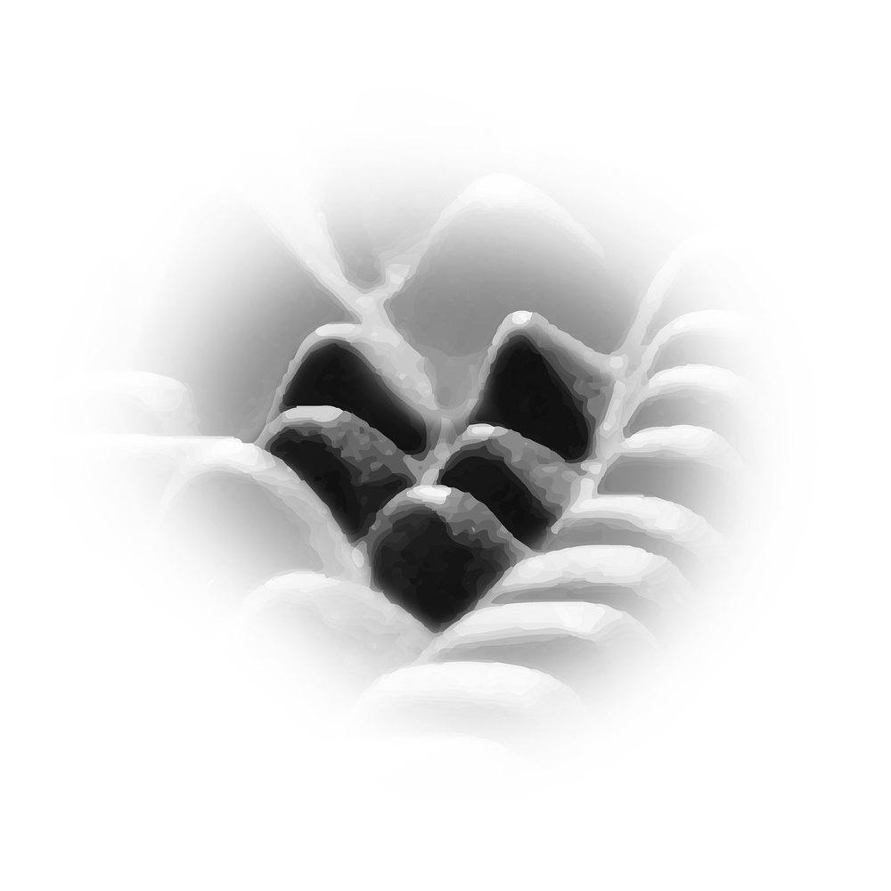 Reflexzone der   Luft- und Speiseröhre   sowie der   Schild- und Thymusdrüse.
