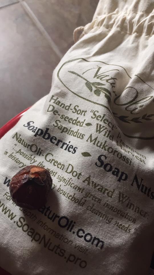 soap_nuts.jpg