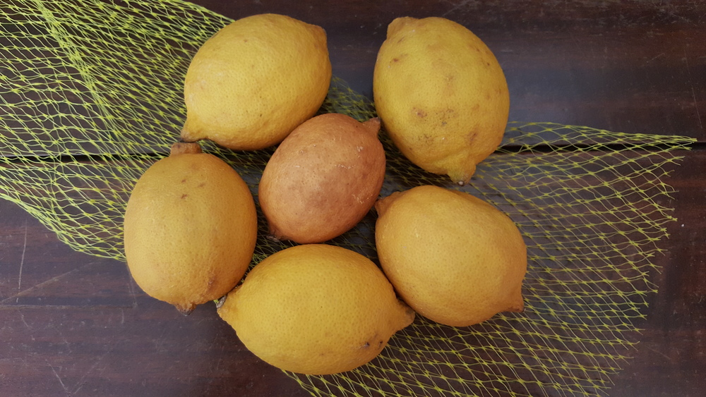 Bad lemons
