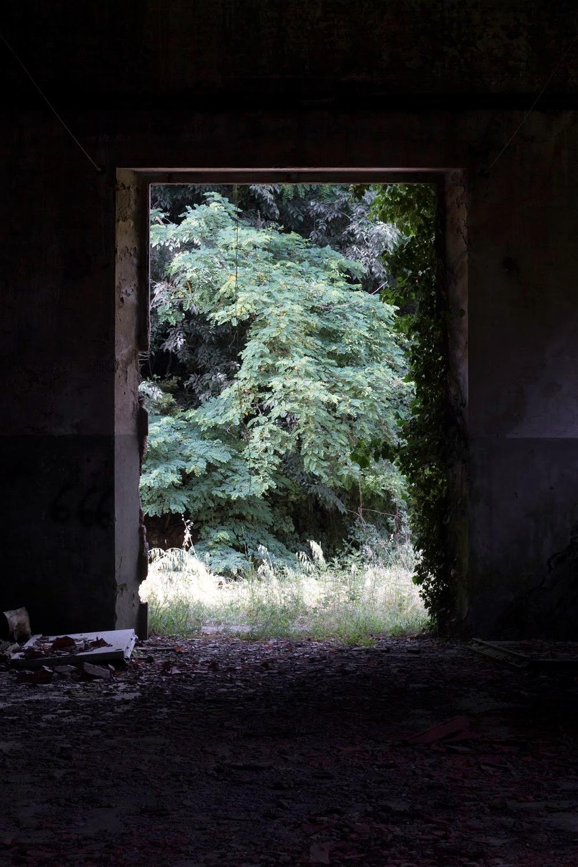 Immagine di Isabella Soulard
