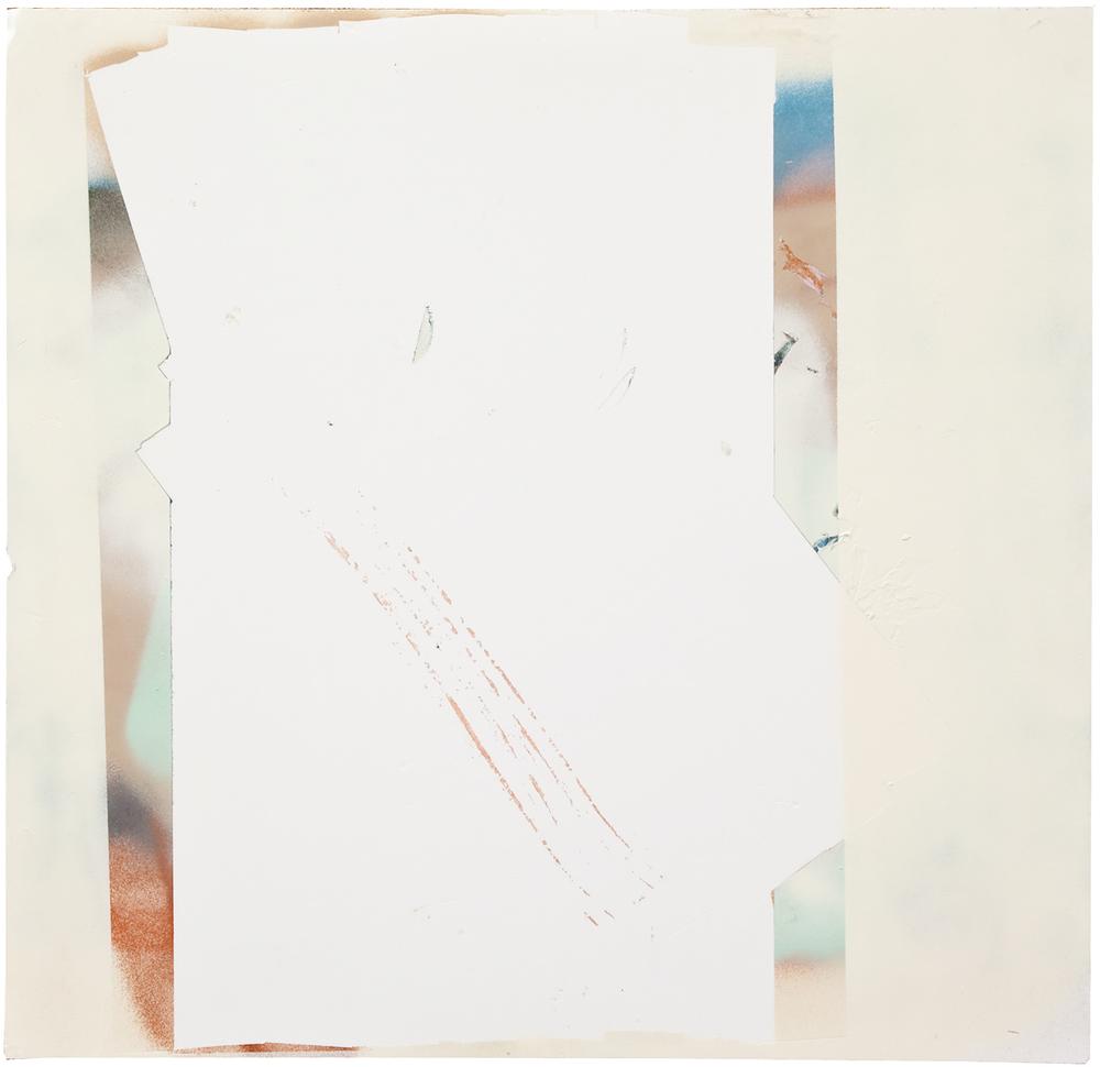 Dacelo gigantea, 60x60 cm