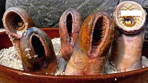 lamprey linguine.png