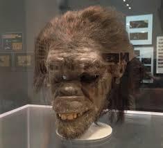 hk 40 ape.jpeg