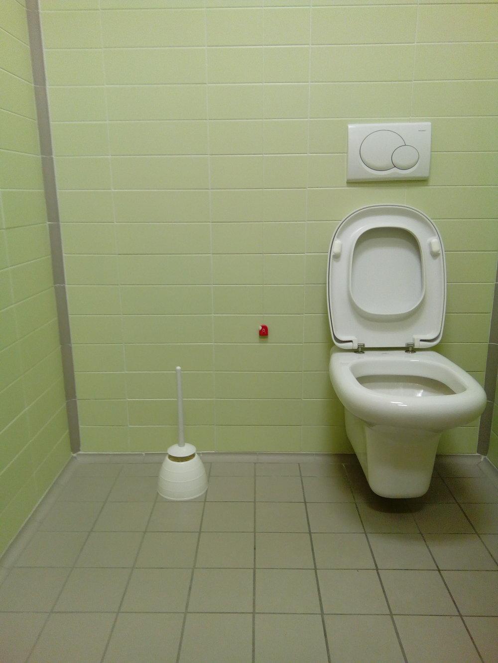 green toilet 2.jpg