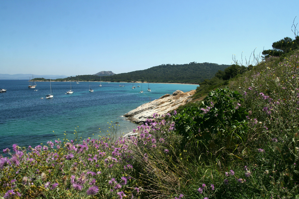 Turquoise waters of the Porquerolles EAT.PRAY.MOVE Yoga Retreats | Provence, France