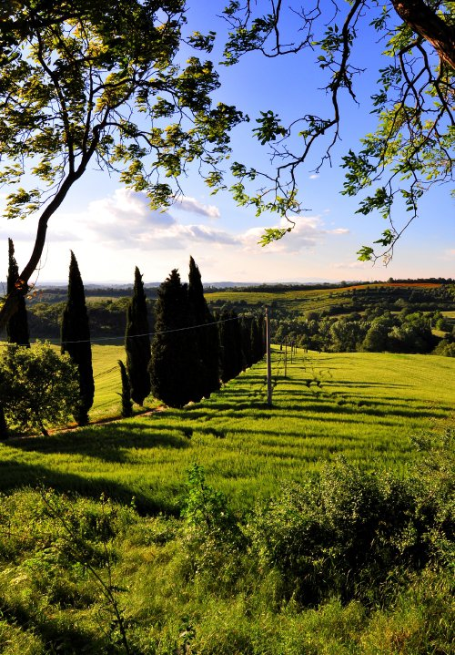 The view from Siliano Alto EAT.PRAY.MOVE Yoga Retreats | Tuscany, Italy