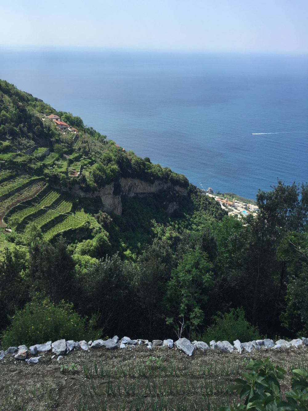 Terraced hillsides of Praiano EAT.PRAY.MOVE Yoga Retreats | Amalfi Coast, Italy