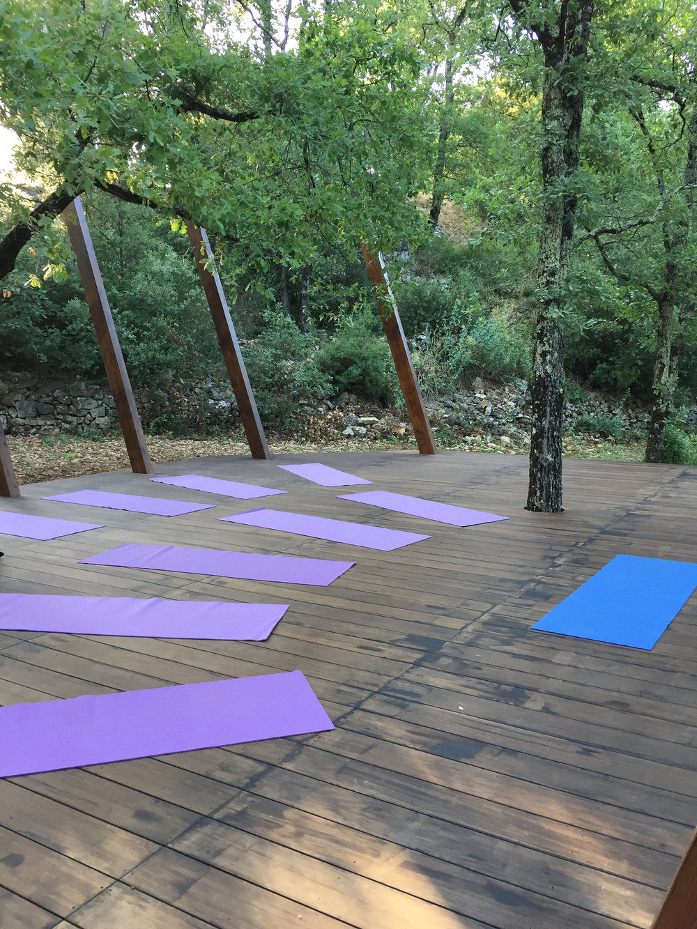 Yoga on the deck amongst the trees EAT.PRAY.MOVE Yoga Retreats | Provence, France