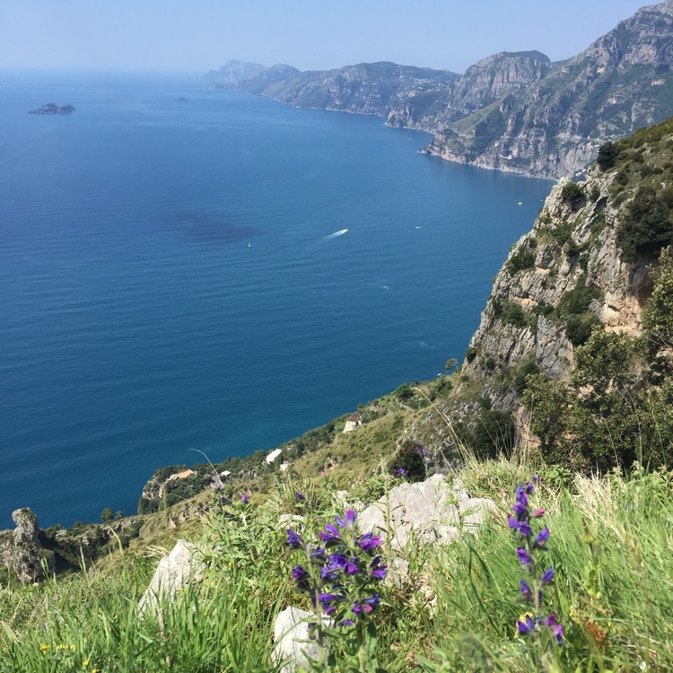 View looking north on the coast EAT.PRAY.MOVE Yoga Retreats | Amalfi Coast, Italy