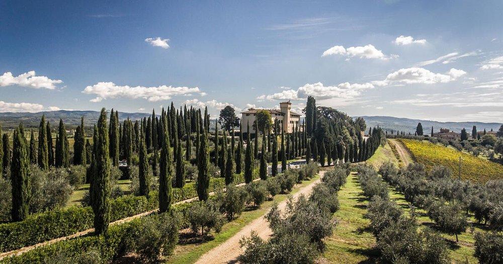 Cypress trees Castello del Nero  | EAT.PRAY.MOVE Yoga | Chianti, Italy