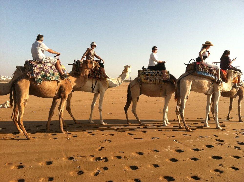 camels | EAT.PRAY.MOVE Yoga Retreats | Morocco