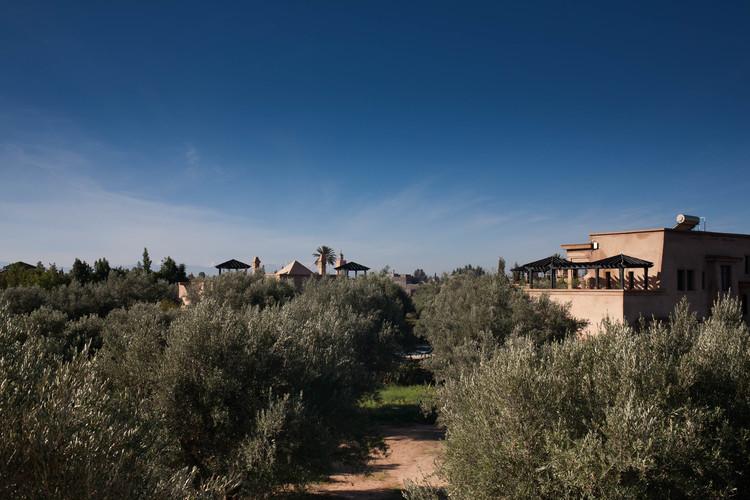 Olive grove views Peacock Pavilions EAT.PRAY.MOVE Yoga Retreats | Marrakesh, Morocco