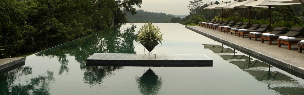 Eye level at the infinity pool Alila Ubud EAT.PRAY.MOVE Yoga Retreats | Bali, Indonesia