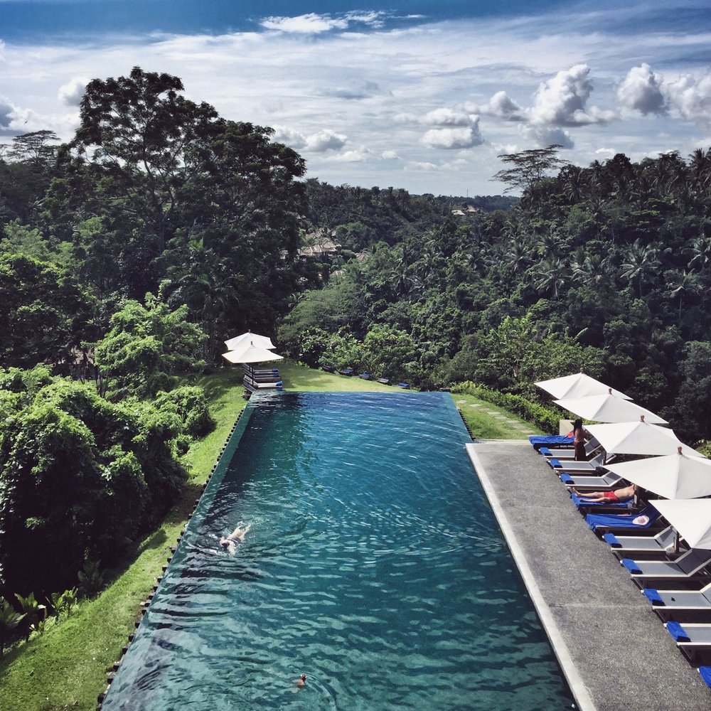 Overhead infinity pool view Alila Ubud EAT.PRAY.MOVE Yoga Retreats | Bali, Indonesia