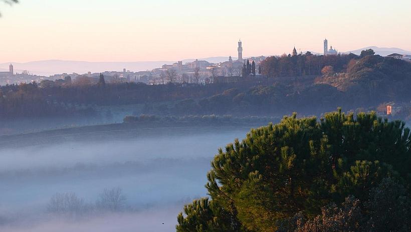 041-View-onto-Siena-1-2.jpg