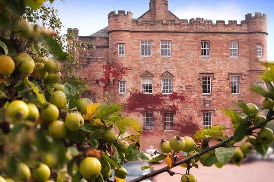 View from the trees Dalhousie Castle | EAT.PRAY.MOVE Yoga | Edinburgh, Scotland