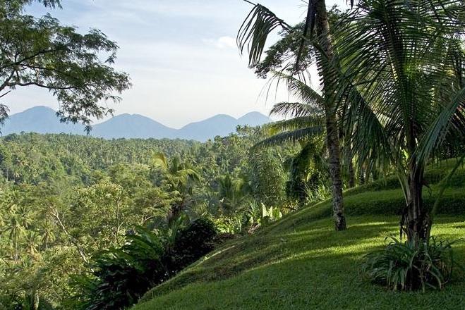 sustainable-tourism-ubud-01.jpg