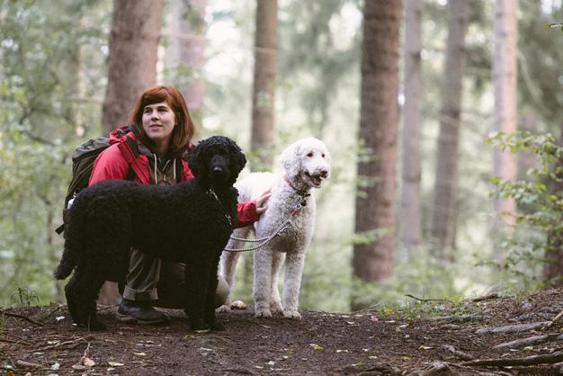 Hundeschule_Doggycamp_Sina_Rademacher