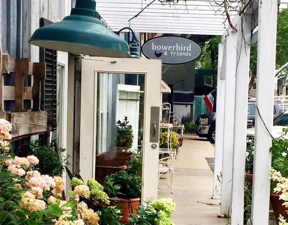 Outside Bowerbird & Friends Shop