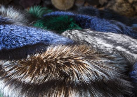Assorted natural, rinsed and dyed Finnish silver fox skins by Saga Furs of Scandinavia. © Jonevon Furs, New York City. 212-714-0645