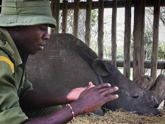 James + Sudan | Ol Pejeta • #thelastmalestanding #documentary #filmmaking @thelastmalestanding