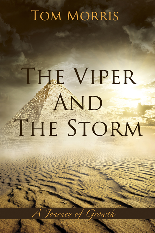 The Viper and the Storm - Book 3: A Journey of Growth