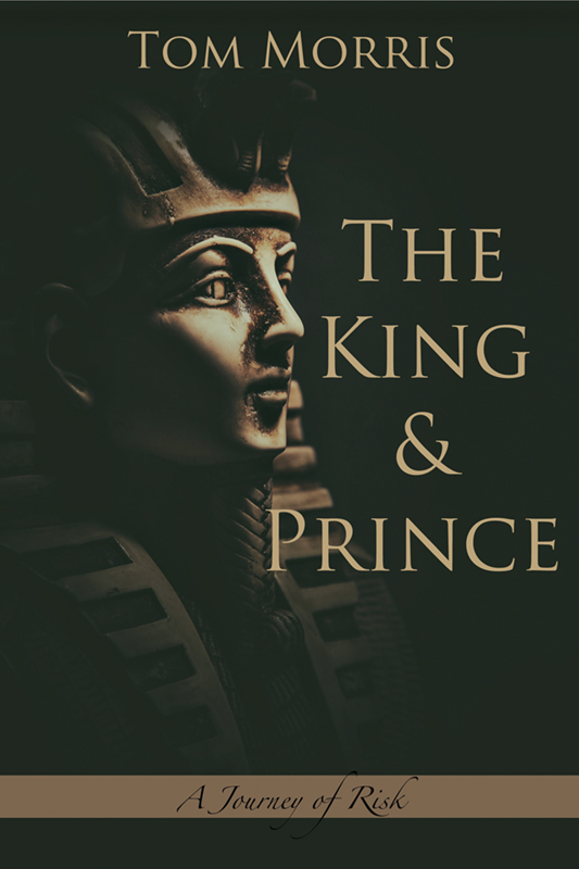 The King and Prince - Book 4: A Journey of Risk