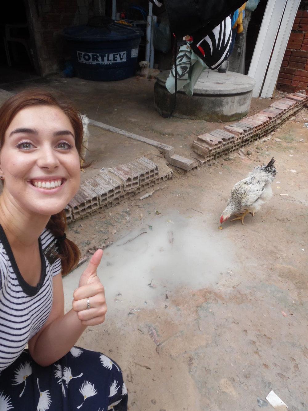 Chicken - September 2016.jpg