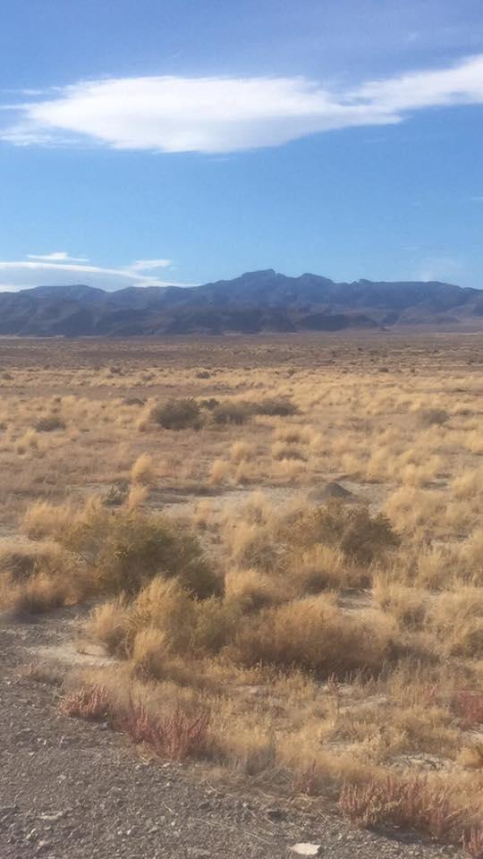 Utah 5.1 Phil King Run For LIsa King.jpg