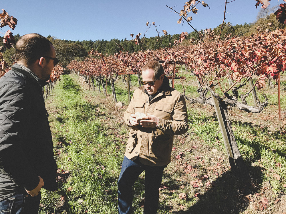 Kevin Hart & Jimmy Hayes in the vineyards of Mayacamas on Mt Veeder, Napa Valley