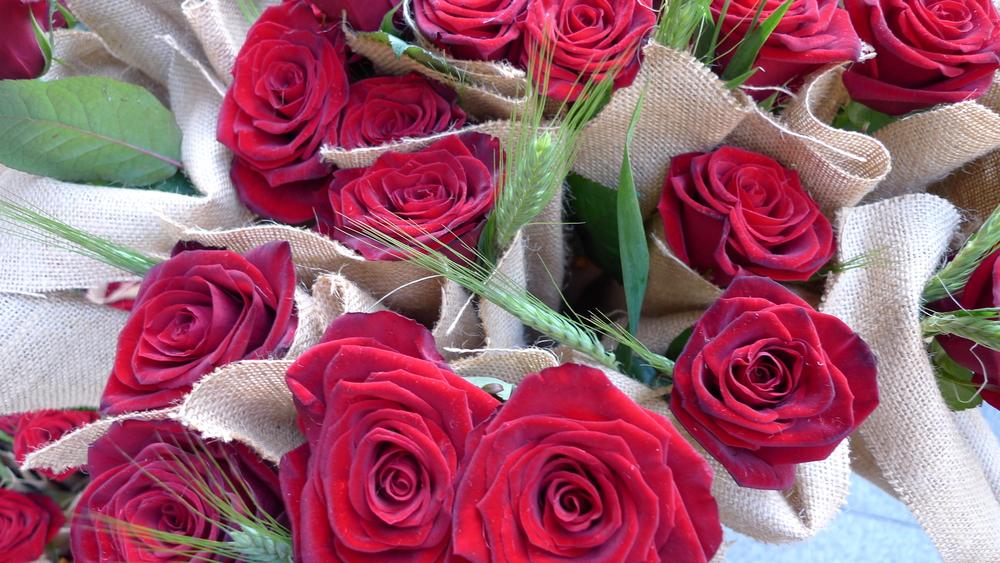 Roses on Rambla de Catalunya