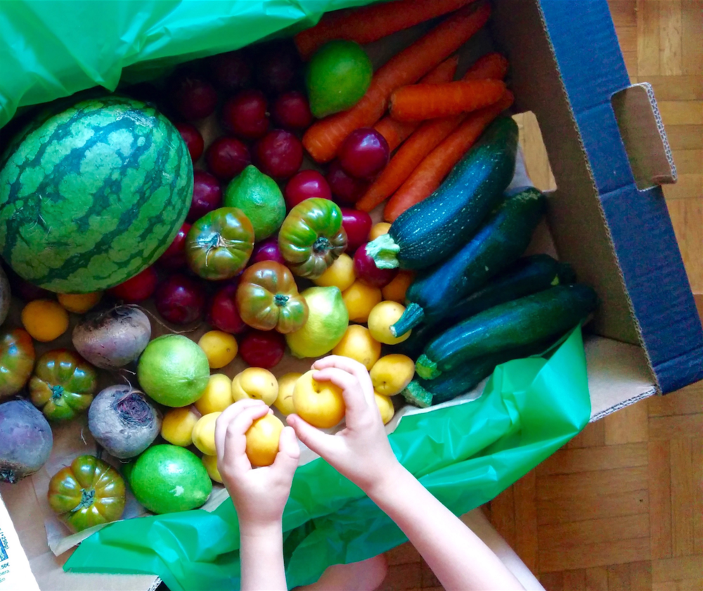 The more opportunities children have to eat fruits and veggies... the more they eat them.