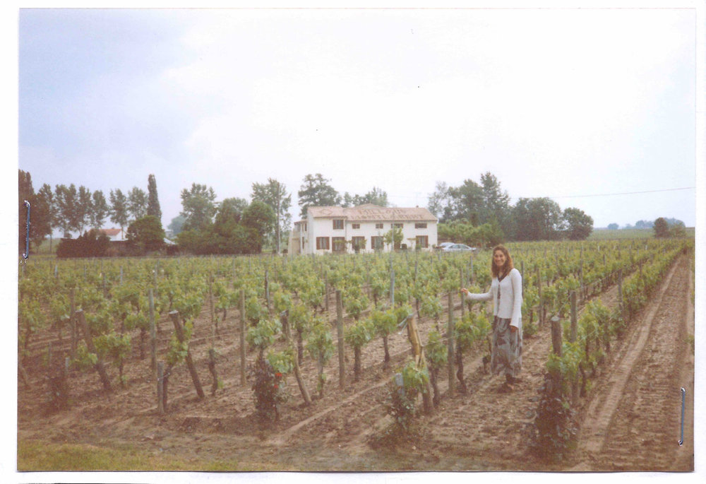 St. Emilion, France, vineyards in 1996.