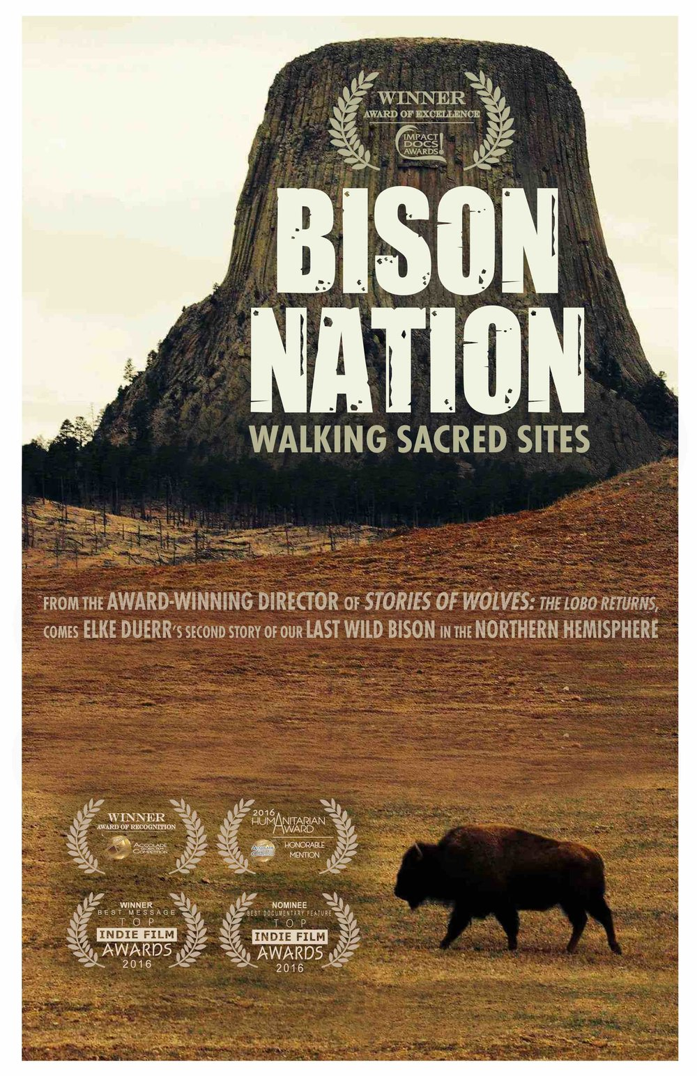 Bison Nation Poster .jpg