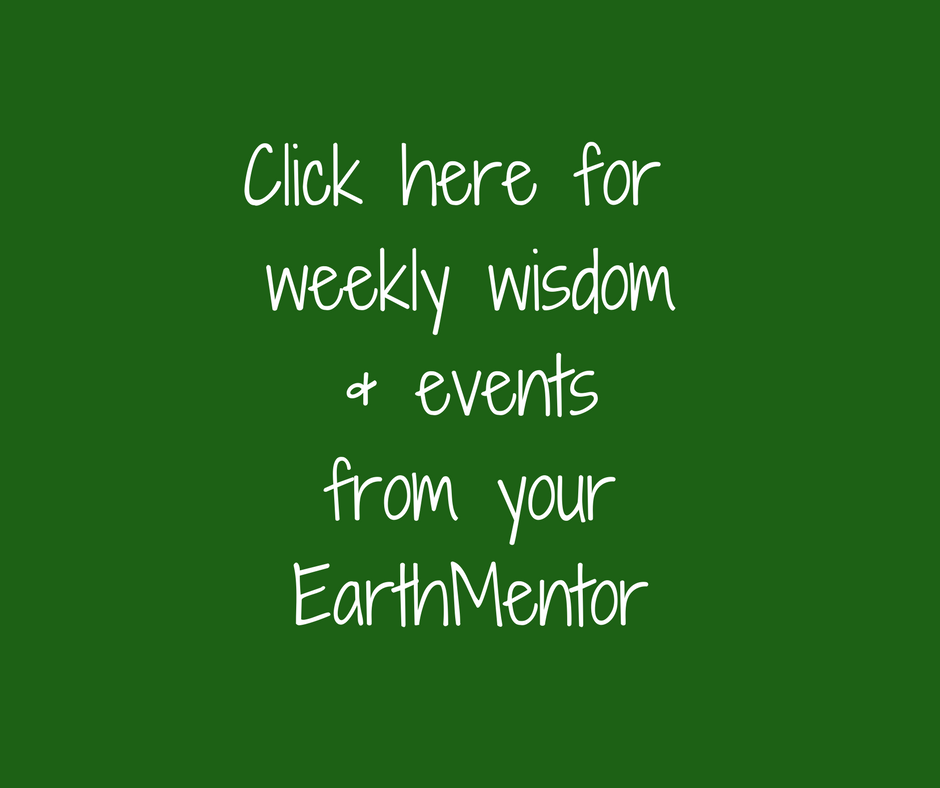 Click here for weekly wisdom & events from the EarthMentor (1).png
