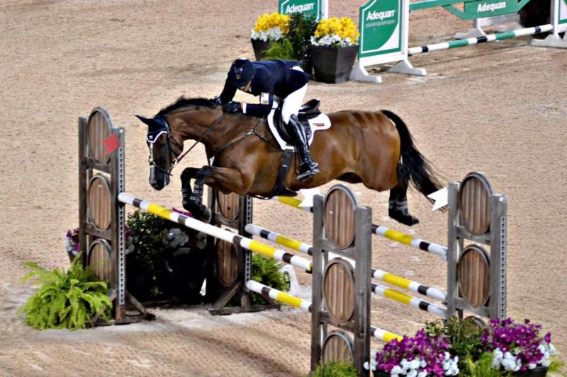 Matt Brown and BCF Belicoso, PC: Eventing Nation