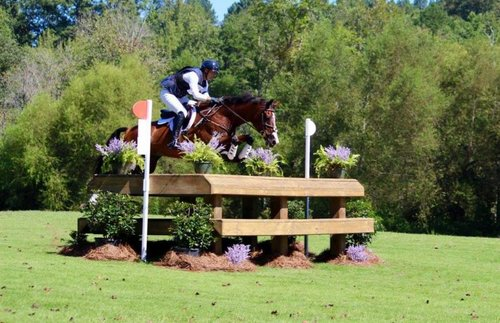 Matt Brown USEA Adequan Gold Cup Advanced Win 2017 with BCF Belicoso, PC Kimmy Durr