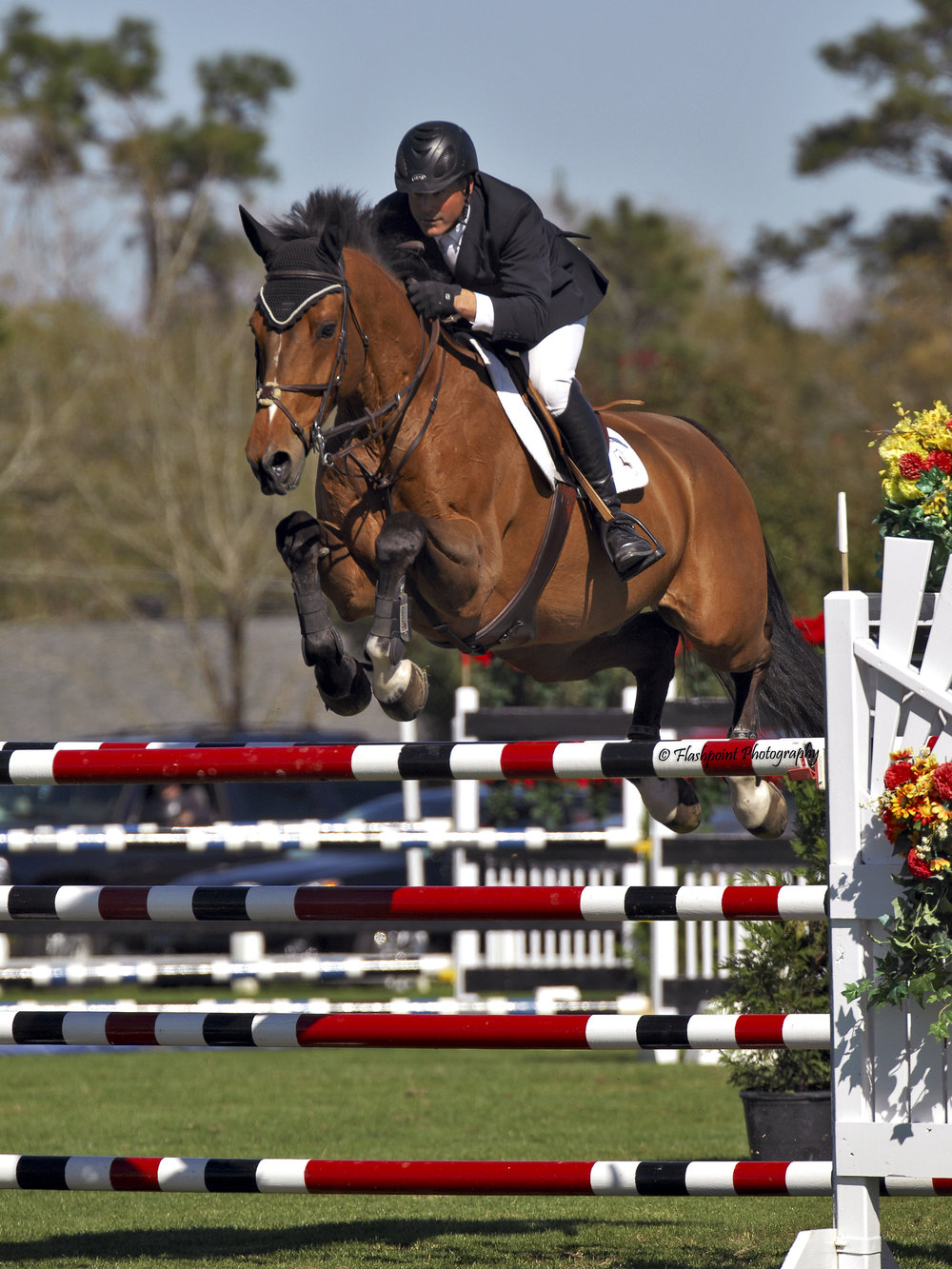 Bob and Dana Brawley - Brawley Farms Inc: 2012 USEF National Horse of the Year, 3'6
