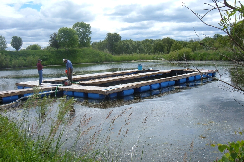 Eco friendly floating fish raceway system