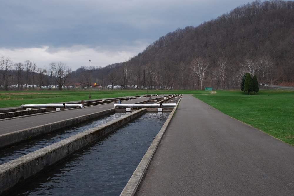 "Traditional concrete raceway. ""Bowden Fish Hatchery"" by Brian M. Powell. Licensed under CC BY-SA 3.0 via  Wikimedia Commons"