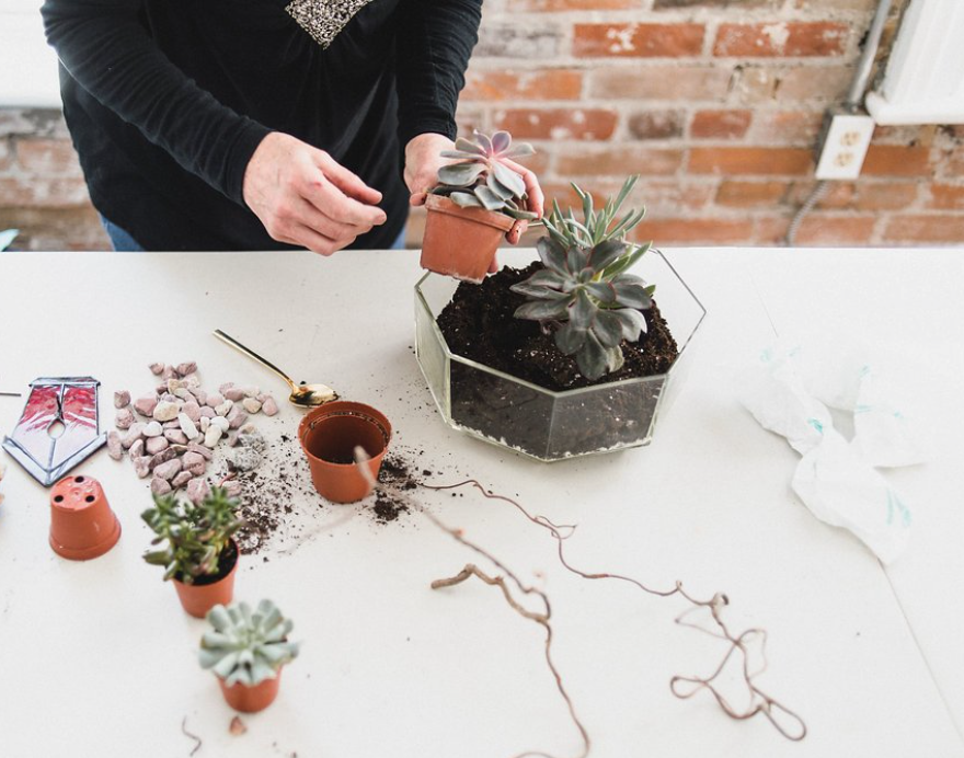 Tonight Heck Yes is running a sold out workshop making cacti gardens.