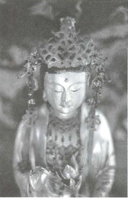 mb32-dharma1