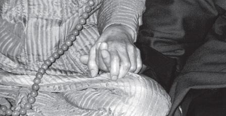 mb34-dharma1
