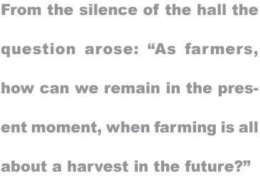 mb63-Harvest2