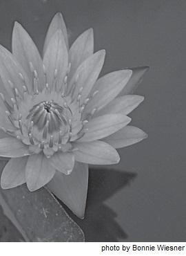 mb51-Buddhist1