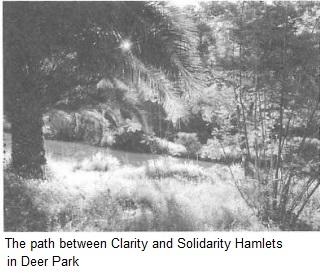 mb31-Deer1